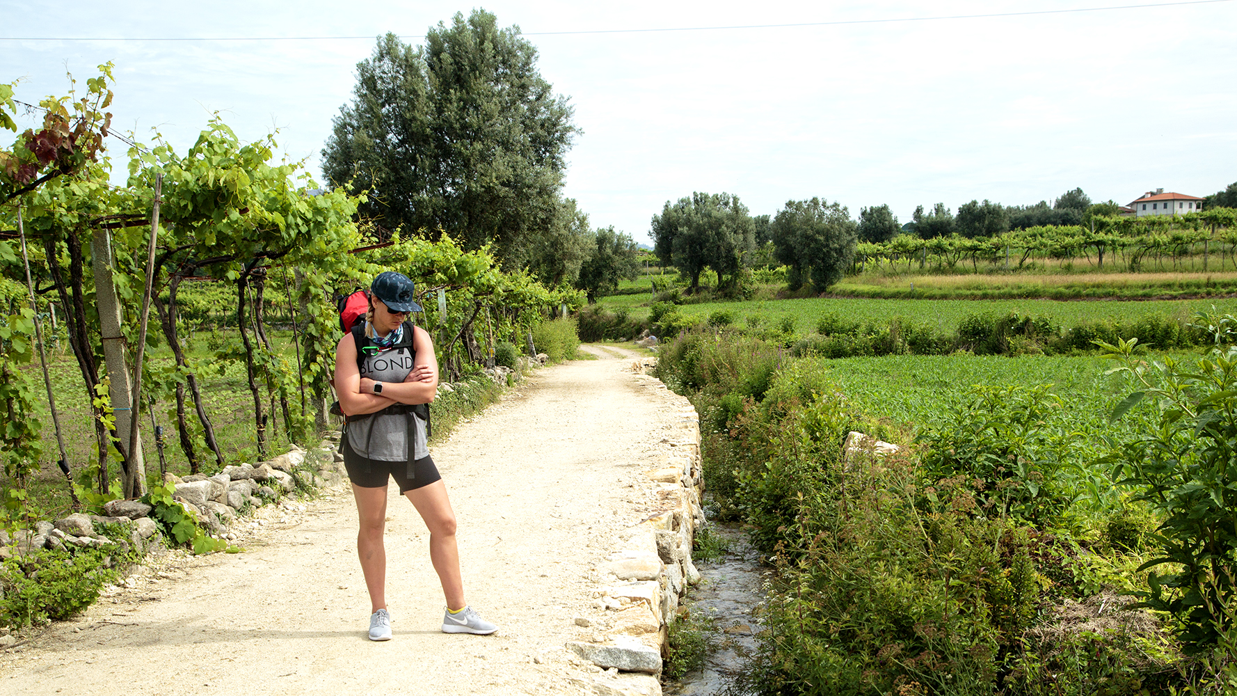 A Flip-Flopping Peregrino On Camino - Image 4