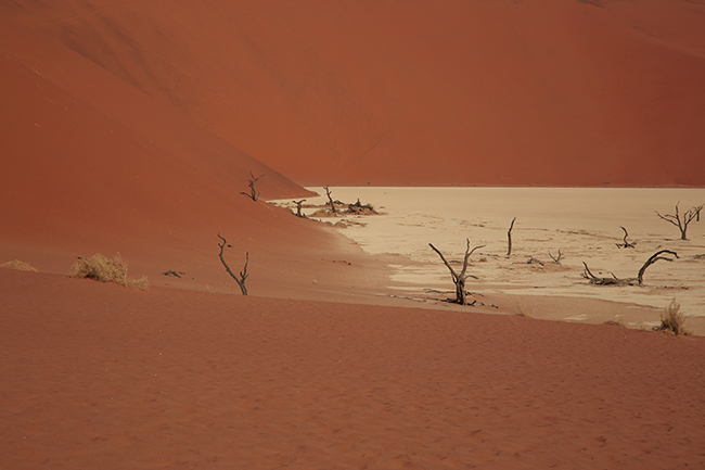 Driving Dirt Roads, Dunes And Deserts - Image 11