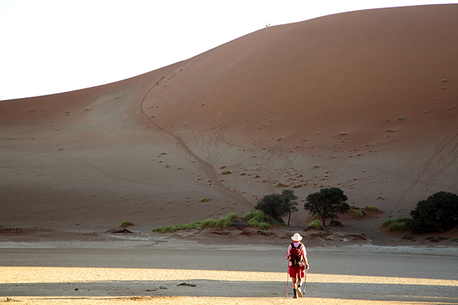 Driving Dirt Roads, Dunes And Deserts - Image 13