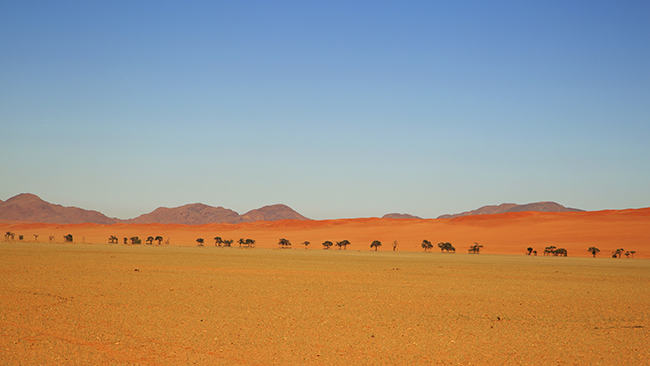 Driving Dirt Roads, Dunes And Deserts - Image 16