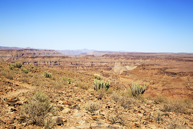 Driving Dirt Roads, Dunes And Deserts - Image 23