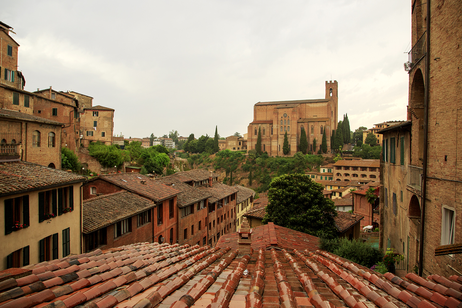 Suffusing My Senses In Siena - Image 4