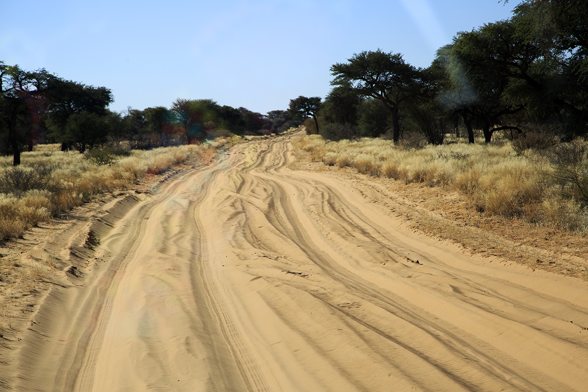 The Fab Four Conquer The Kalahari - En Route to Mabuasahube - Image 12