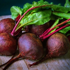 Rooting For Beets