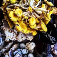 Shiitakes from the Oranjezicht market in Green Point. Mellow yellow. #shiitake #maricha360 #vegetables #market #vegetablemarket #greenpoint #capetown #organic #yellow #food #divine #gorgeous #colourful