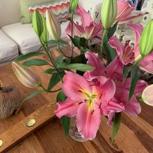 Nice to come home to these lilies in full bloom